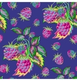 Hand painted pattern of bright colorful raspberry vector image