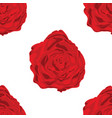 pattern of red roses in white background vector image vector image