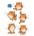 set of cute orange tabby cat characters in vector image vector image