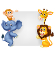 Wild animal cartoon holding blank sign vector image vector image