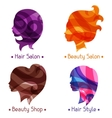women silhouettes emblems beauty or vector image