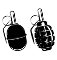 hand grenade bomb explosion weapons army weapon vector image