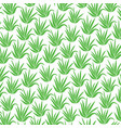 background pattern with aloe plant icons vector image vector image
