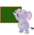 Elephant writing on blackboard vector image vector image