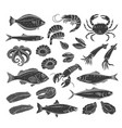 seafood glyph icon set vector image vector image