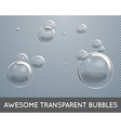 Soap Water Bubbles Set Transparent Isolated vector image vector image