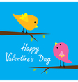 Two cartoon birds Happy Valentines Day card vector image vector image