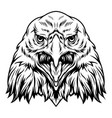 vintage aggressive eagle head concept vector image