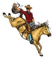 Rodeo Cowboy riding a horse isolated vector image