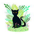 beautiful black cat sits on a background of vector image