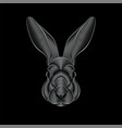 engraving stylized silver rabbit portrait on vector image vector image