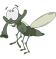 green insect vector image vector image