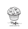 hand drawn muffin vector image