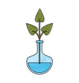 hydroponic plant in container vector image
