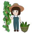 planter and cucumber vector image