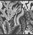 seaweed seamless pattern hand drawn seaweeds on vector image vector image