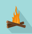 start fire camp icon flat style vector image