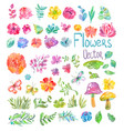 watercolor beautiful floral design big collection vector image