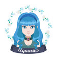 zodiac sign - aquarius vector image
