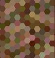Brown color hexagon mosaic background design vector image vector image