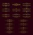 gold stripes frame with vintage elements vector image