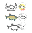 bream fishing logo vector image vector image