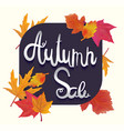 calligraphy poster for autumn sale vector image vector image