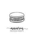 hand drawn macaron vector image vector image