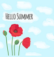 hello summer text with cute colorful red field vector image