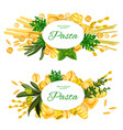 italian pasta and cooking herbs vector image vector image