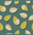 pumkin seeds seamless pattern vector image vector image