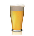 realistic beer in glass vector image