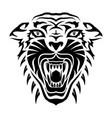 tiger 0014 vector image vector image