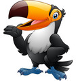 cartoon funny toucan presenting vector image vector image