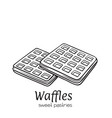 hand drawn belgian waffles vector image vector image