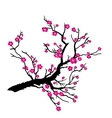 Japanese plum blossom vector image