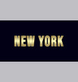 new york city typography design greetings for vector image