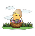 chick with eggshell vector image vector image