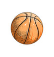 drawing basketball ball in color vector image vector image