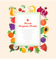 fresh organic fruit - modern colorful vector image vector image