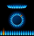 realistic detailed 3d natural gas flame kitchen vector image vector image