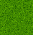 seamless grass field vector image vector image