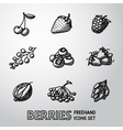 set freehand berries icons - cherry strawberry vector image