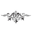 star tailpiece have three star and dark leaves vector image vector image