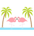 two pink flamingo couple standing on one leg vector image