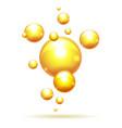 argan oil bubbles vector image