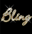 Bling bling word vector image vector image