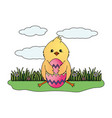 chick with eggshell vector image