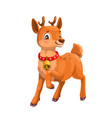 deer or reindeer fawn with red collar and bell vector image