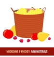 Moonshine and whiskey Harvest raw materials vector image vector image